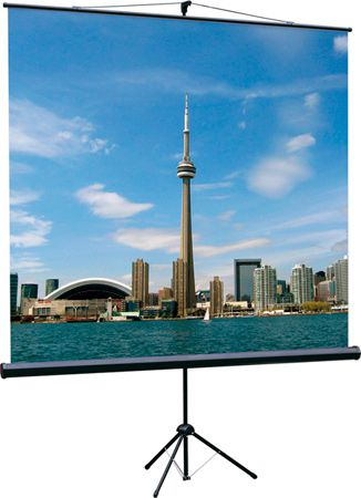 Экран Lumien Eco Picture 1:1, 160x160 см (LEP-100105), разные размеры