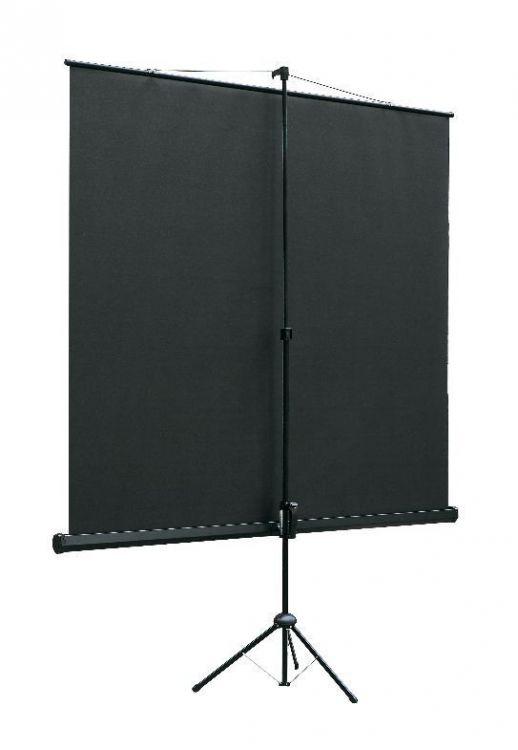 Экран Lumien Eco View 1:1, 160x160 см (LEV-100105), разные размеры